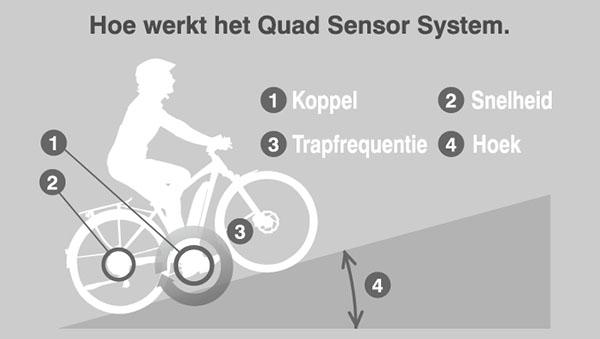 yamaha quad sensor